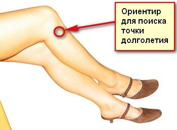 Как найти точку долголетия под коленом е массаж и польза